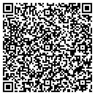 QR-код с контактной информацией организации ОРВЕЛ, ООО