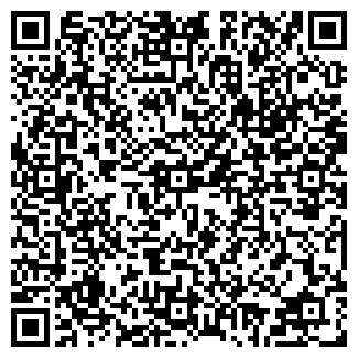 QR-код с контактной информацией организации СОЛОВЬЕВ, ИП