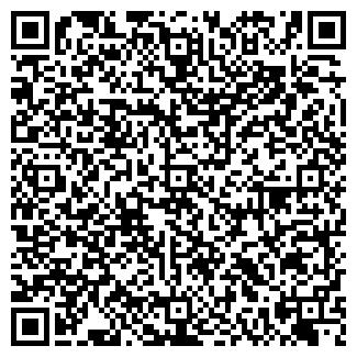QR-код с контактной информацией организации № 81 МУЧ