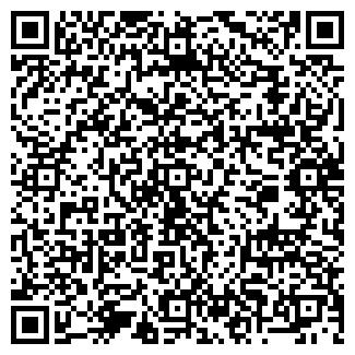 QR-код с контактной информацией организации № 197