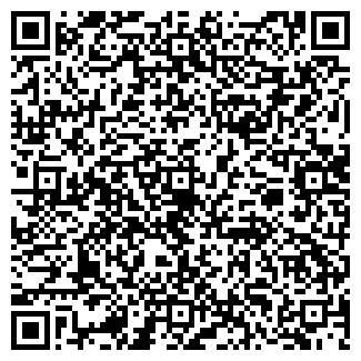 QR-код с контактной информацией организации № 198