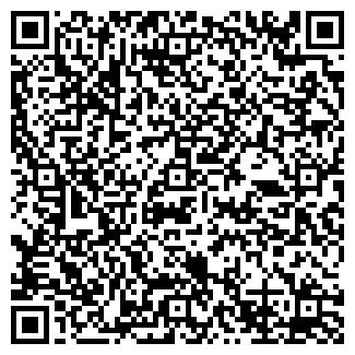 QR-код с контактной информацией организации № 205