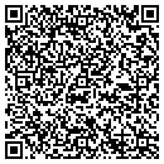 QR-код с контактной информацией организации № 221