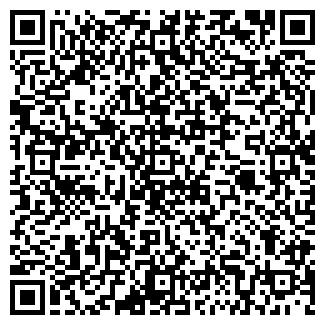 QR-код с контактной информацией организации № 273