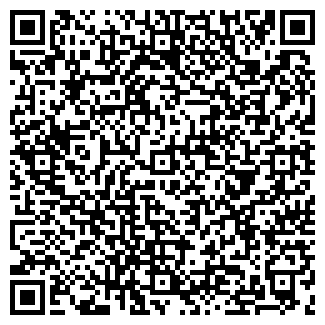 QR-код с контактной информацией организации № 293 ДОУ