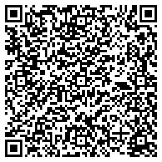 QR-код с контактной информацией организации № 317