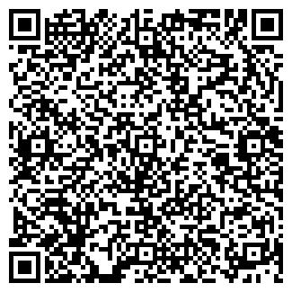 QR-код с контактной информацией организации № 387