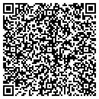 QR-код с контактной информацией организации БАБИЧЕВ И.М.