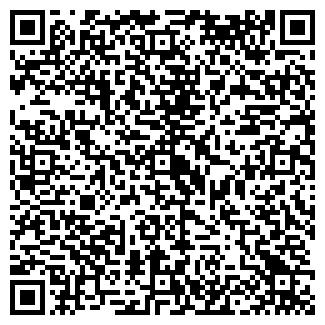 QR-код с контактной информацией организации ШЕЙФЕЛЬ И.Е.