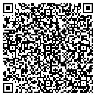 QR-код с контактной информацией организации VISIT, ЧП
