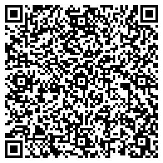 QR-код с контактной информацией организации БИС ТД