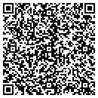 QR-код с контактной информацией организации БАБИЧЕВА, ЧП