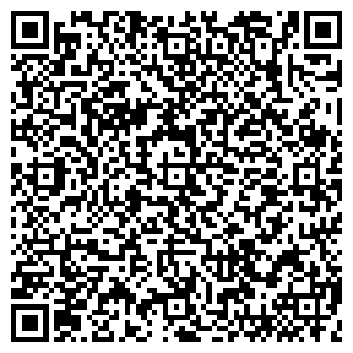 QR-код с контактной информацией организации ВИРИНА, ТОО