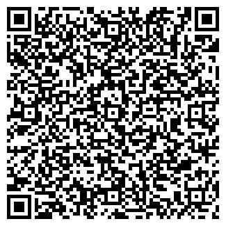 QR-код с контактной информацией организации ЛИФАНОВ Э.В.