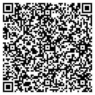 QR-код с контактной информацией организации ВИСМУТ ИЧП