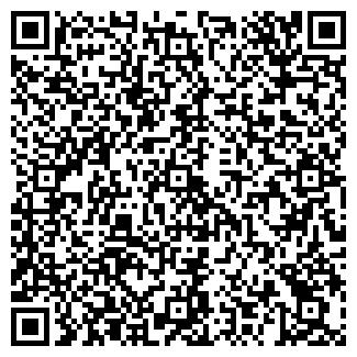 QR-код с контактной информацией организации ДОМИНО ООО РВС