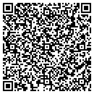 QR-код с контактной информацией организации ВЕГА-ЛИЗИНГ