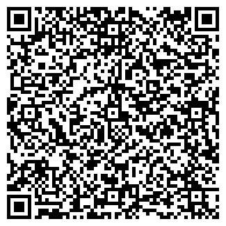 QR-код с контактной информацией организации ТОО БЕРЕЗОВЫЙ