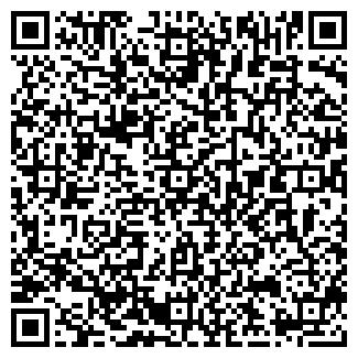 QR-код с контактной информацией организации ЗА РУЛЕМ