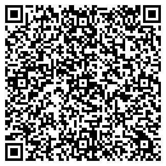 QR-код с контактной информацией организации АЛЬВИНА, ООО