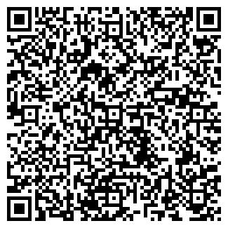 QR-код с контактной информацией организации VIP-ЦЕНТР