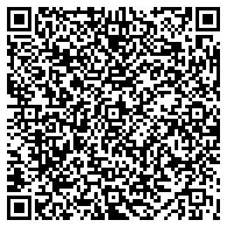 QR-код с контактной информацией организации ПЛЕЯДЫ