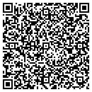 QR-код с контактной информацией организации ООО ВЯТИЧ НИЦ