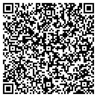 QR-код с контактной информацией организации ДОРОЖНОЕ