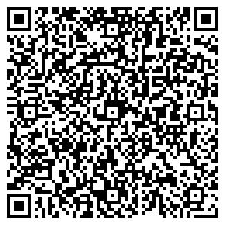 QR-код с контактной информацией организации СКАЙЛАЙН