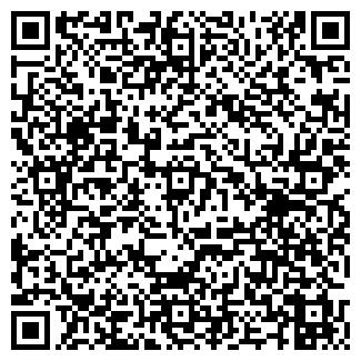 QR-код с контактной информацией организации БЛИННАЯ