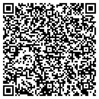 QR-код с контактной информацией организации ЗВЁЗДНЫЙ