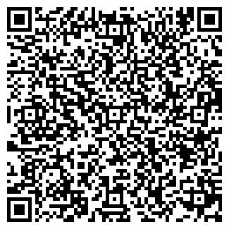 QR-код с контактной информацией организации ДВИЗОВА Н.Н.