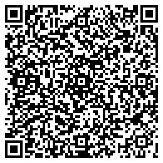 QR-код с контактной информацией организации ГЕЙЗЕР