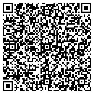 QR-код с контактной информацией организации БРИЗ, МАЛОЕ ЧП