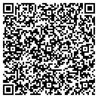 QR-код с контактной информацией организации НОВЫЙ БАБУИН