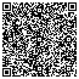 QR-код с контактной информацией организации GEMINI