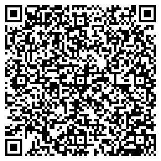 QR-код с контактной информацией организации LEDY ICE