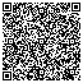 QR-код с контактной информацией организации ВИИ, ООО