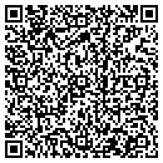 QR-код с контактной информацией организации РСИИК, ООО
