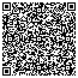 QR-код с контактной информацией организации ООО ВИСМА-ПЛАНАР НП