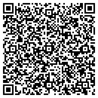 QR-код с контактной информацией организации ООО TEAM ЛТД