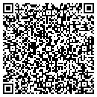 QR-код с контактной информацией организации DJVU TRAVEL