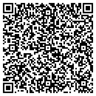 QR-код с контактной информацией организации АЛЕКС, МАЛОЕ, ЧП