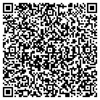 QR-код с контактной информацией организации ДЕТСКИЙ САД № 381