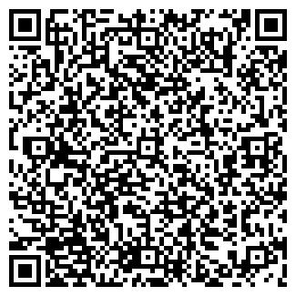 QR-код с контактной информацией организации АММ РУСЬ ООО