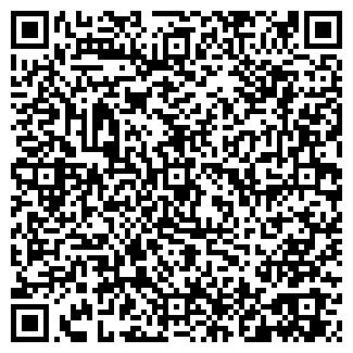 QR-код с контактной информацией организации НЕЧКИНСКОЕ, ТОО