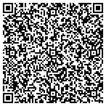 QR-код с контактной информацией организации ХИМИИ СИЛИКАТОВ ИМ. И. В. ГРЕБЕНЩИКОВА