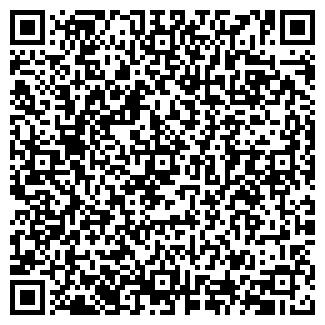 QR-код с контактной информацией организации СТЭМ, ООО