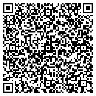 QR-код с контактной информацией организации № 450