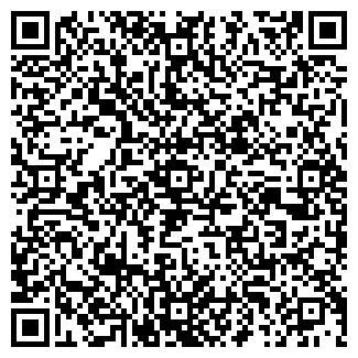 QR-код с контактной информацией организации № 541